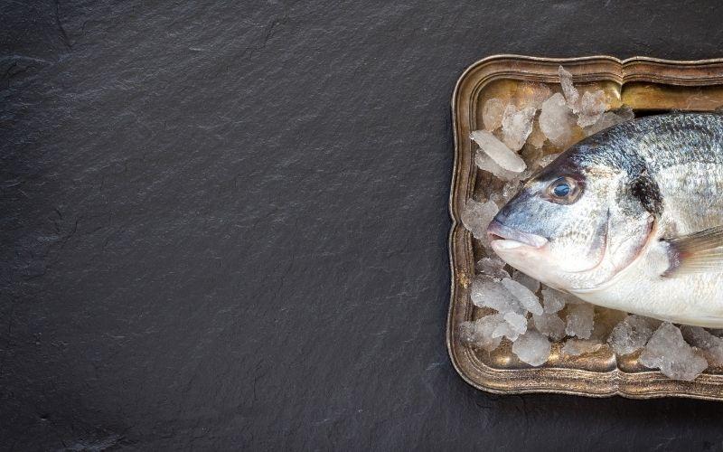 fish broth benefits