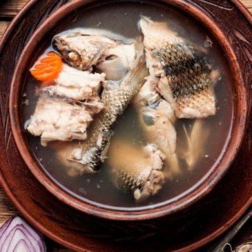 recipe for fish stock