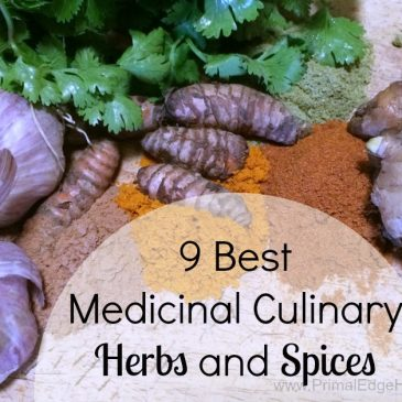 9 best medicinal culinary herbs and spices 2
