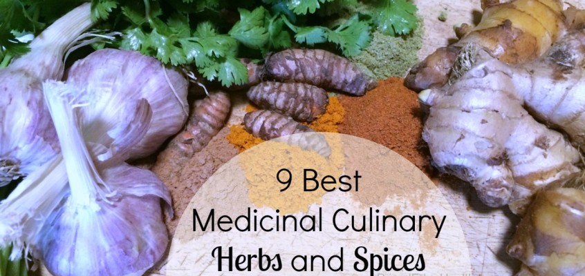 9 Best Medicinal Culinary Herbs and Spices