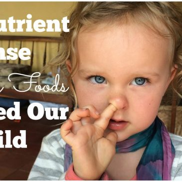 The Nutrient Dense Healthy Foods We Feed Our Child