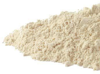 garlic_powder