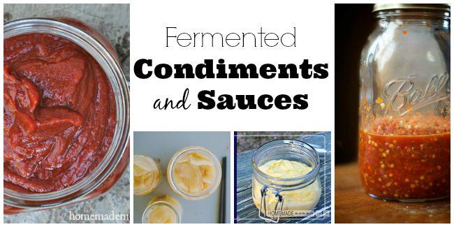 Fermented Condiment Recipes