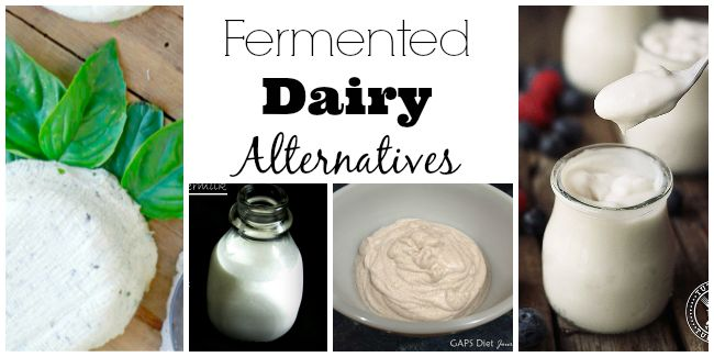 fermented dairy alternatives