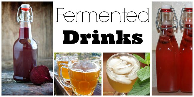 fermented drink recipes
