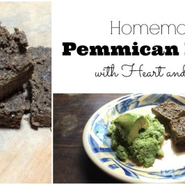 Homemade Pemmican Recipe with Organ Meats