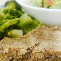 quick and easy pemmican