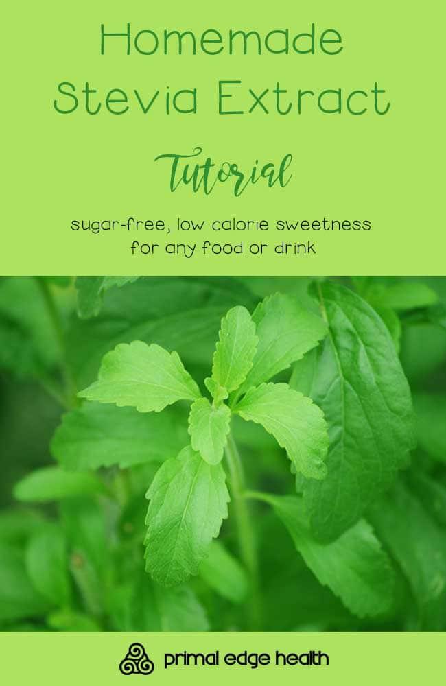 Homemade Stevia Extract Tutorial