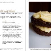 Chocolate Pumpkin Seed Cupcakes