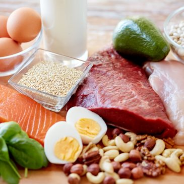 EP 113: Does excess protein turn into sugar on a Ketogenic Diet?