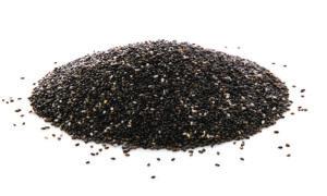 ketogenic chia seed pudding