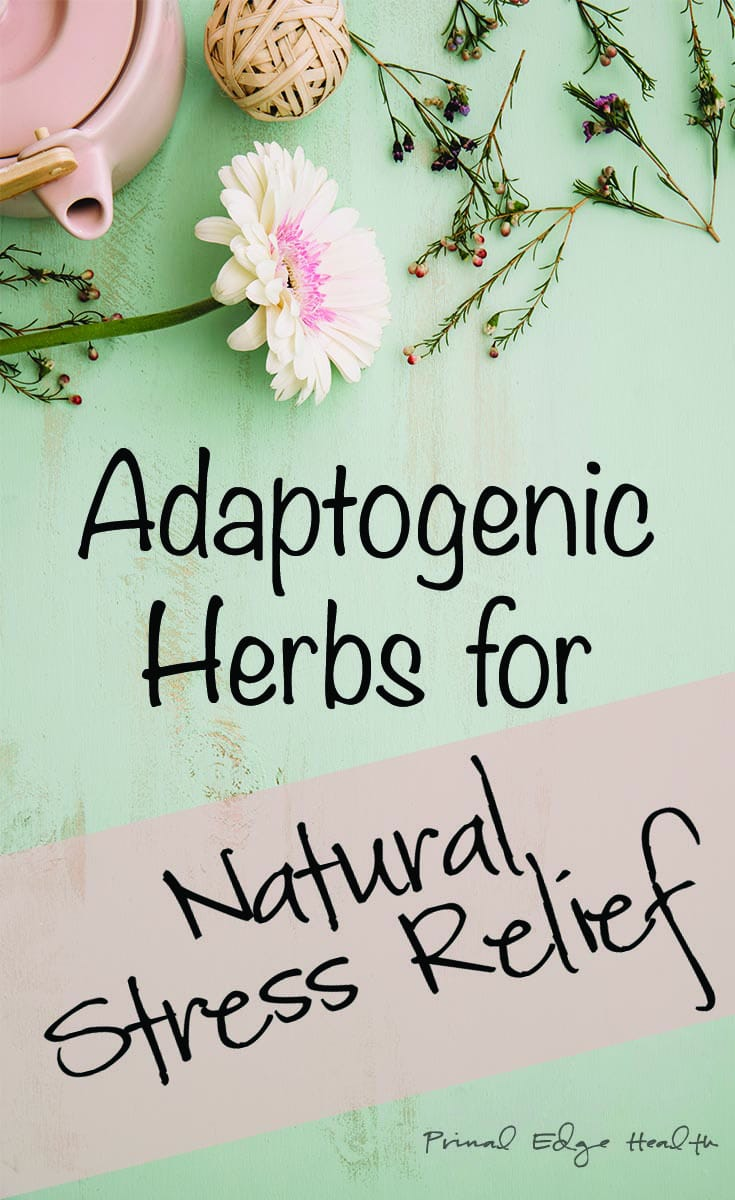 Adaptogenic Herbs for Natural Stress Relief - Primal Edge Health
