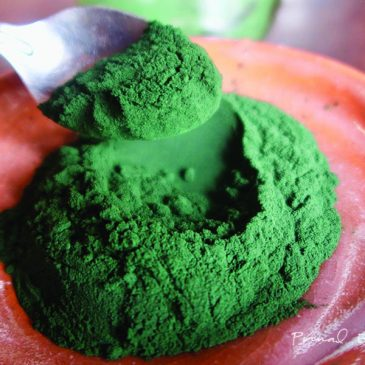 The Superior Green Food: Chlorella and Spirulina Powder