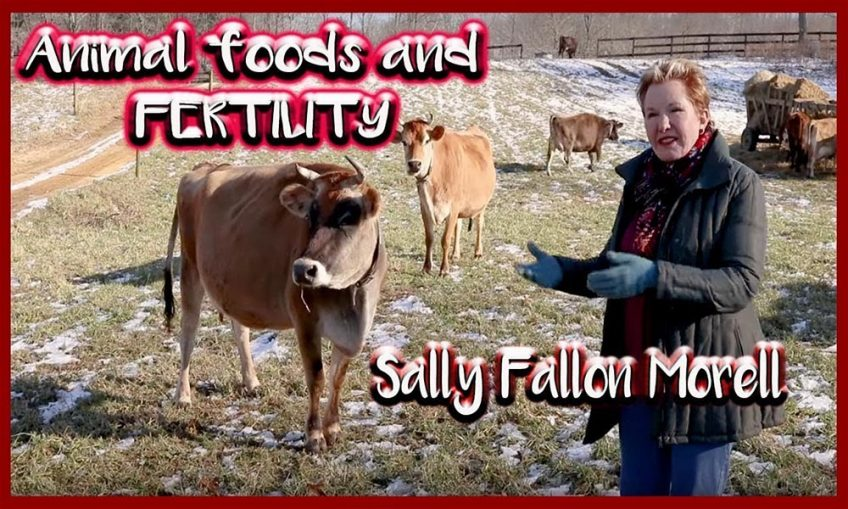 Sally Fallon Morell