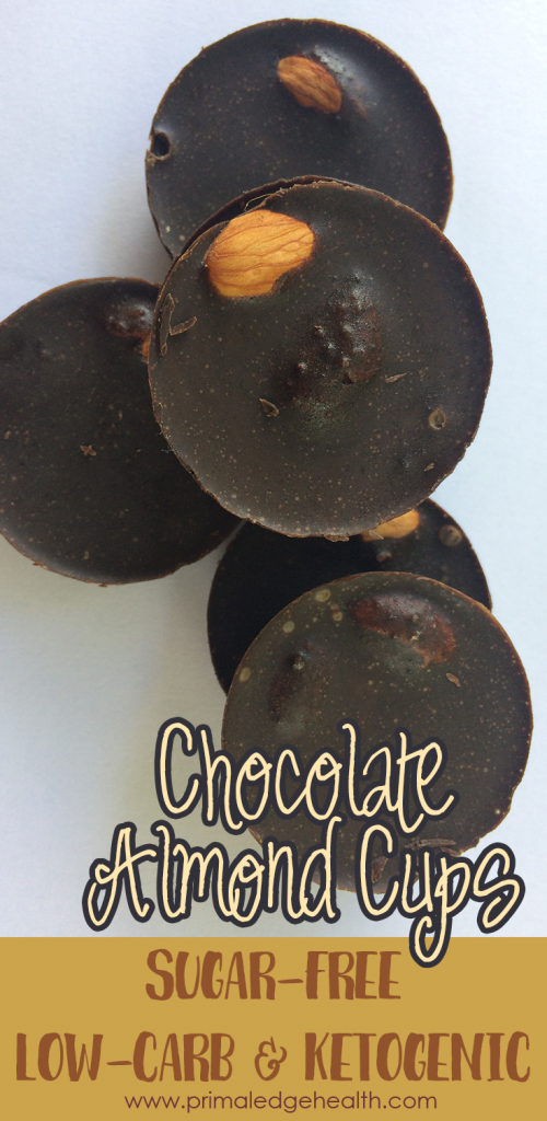 sugar free chocolate recipe  pIN