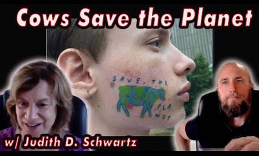 Judith D Schwartz