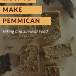 Traditional Native American Pemmican recipe