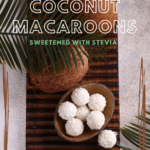no bake sugar free dessert with coconut