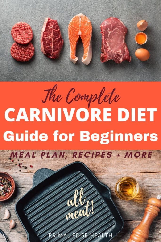 carivore diet guide for beginners