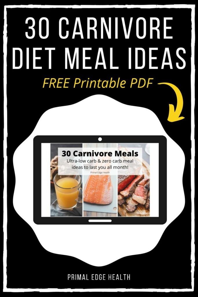 meal plan carnivore diet recipes